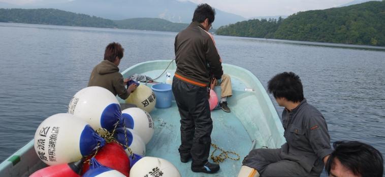 夏期禁漁区のブイ撤収